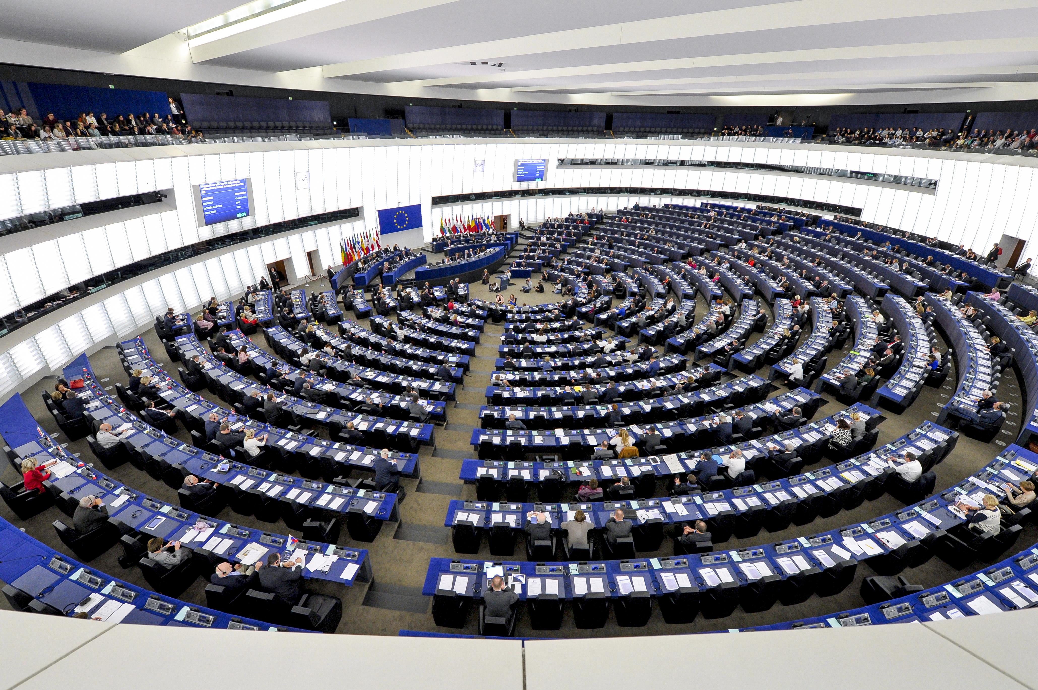 Дваесет европратеници со изјава за почеток на преговори со Македонија, меѓу нив и Пицула и Зовко